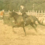 Amity extended trot
